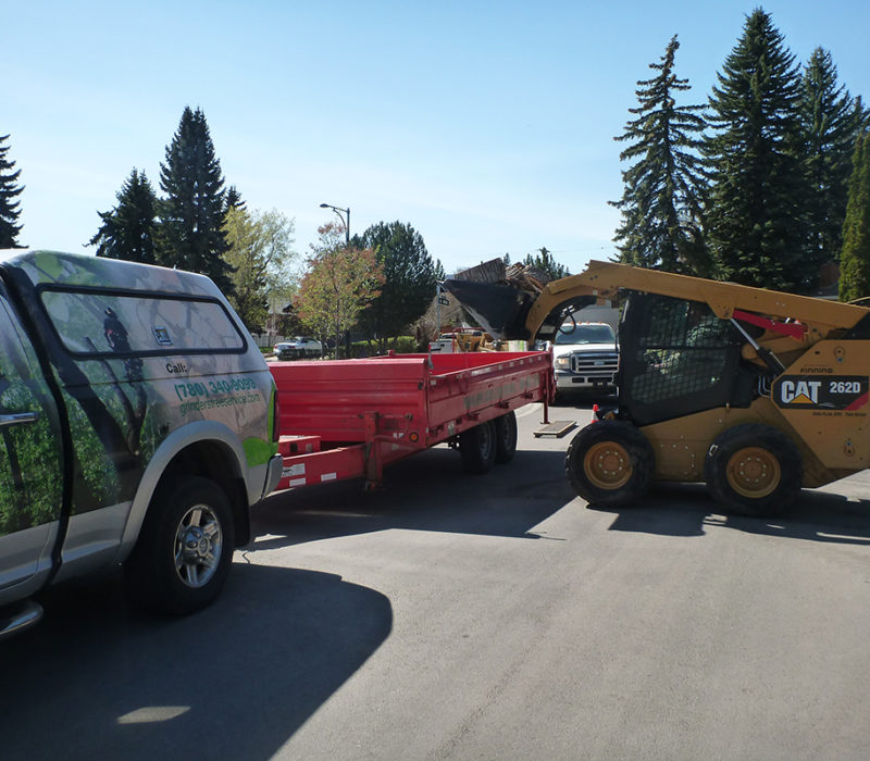Tree Service Equipment