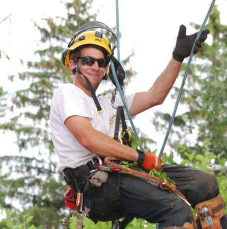 Tree Service Edmonton